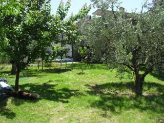 Beautiful Private Tourist Accommodation - Torri in Sabina vacation rentals