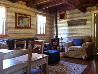 Nice Cottage with Internet Access and Grill - Allenspark vacation rentals