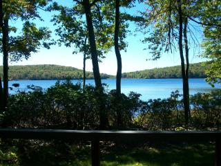 OMG the View! Spectacular LAKEFRONT @ Big Boulder! - Lake Harmony vacation rentals