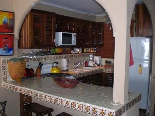 Welcome to La Palapa Downtown - Puerto Vallarta vacation rentals