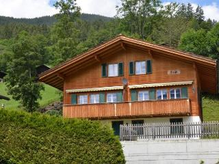 cozy 4star apartment Grindelwald Switzerland - Jungfrau Region vacation rentals