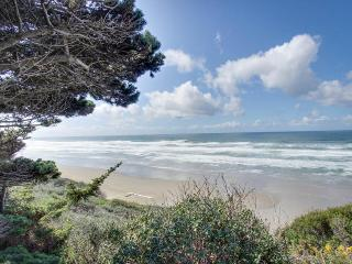 Oceanfront, pet-friendly, secluded home near golf & beaches - Bandon vacation rentals
