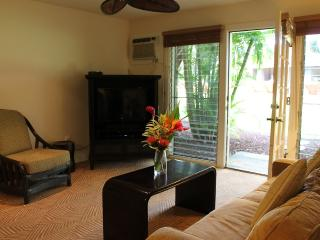 D107 20% off and 7th night free! 12/1-12/18 - Lahaina vacation rentals