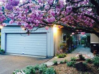 Nice House with Deck and Internet Access - Olympia vacation rentals