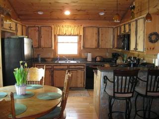 Pine Cone Ridge Cabin - Blue Ridge vacation rentals
