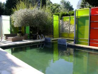 Perfect 7 bedroom House in Les Baux de Provence with Shared Outdoor Pool - Les Baux de Provence vacation rentals