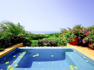 Beautiful 4 bedroom House in Punta de Mita with Internet Access - Punta de Mita vacation rentals