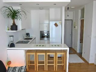 Bright Condo with Internet Access and Central Heating - Ljubljana vacation rentals