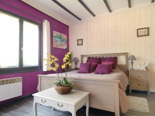Romantic 1 bedroom Aix-en-Provence Guest house with Internet Access - Aix-en-Provence vacation rentals