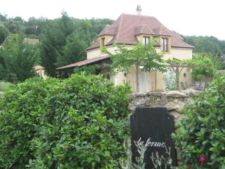 LA FERME lovely house in TREMOLAT DORDOGNE - Tremolat vacation rentals
