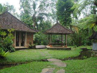 1 bedroom Lodge with Internet Access in Penebel - Penebel vacation rentals