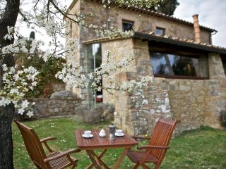 Villa di Geggiano - Siena vacation rentals