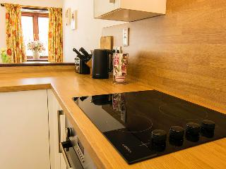 Forget Me Not at Penpethy Holiday Cottages - Tintagel vacation rentals