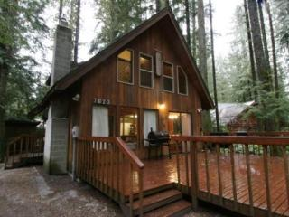 CR101iMapleFalls - Snowline #35 - Pet-friendly country cabin - Glacier vacation rentals