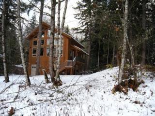 CR101nMapleFalls  - Glacier Springs Cabin #40 - A pet friendly cedar cabin with a hot tub and game room!  Now has Wi-Fi! - Glacier vacation rentals