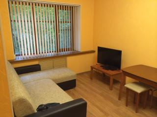 Nice Condo with Internet Access and A/C - Novgorod vacation rentals
