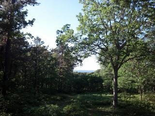 1715 - Mink Meadows Home with Beautiful Views of Vineyard Sound - Vineyard Haven vacation rentals