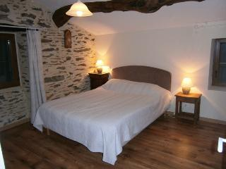 Nice Bed and Breakfast with Internet Access and Central Heating - Valleraugue vacation rentals