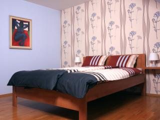 Perfect 2 bedroom Zlin Apartment with Internet Access - Zlin vacation rentals