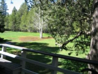 V32-Serene setting backing the meadow - follow the trails to the river! - South Lake Tahoe vacation rentals