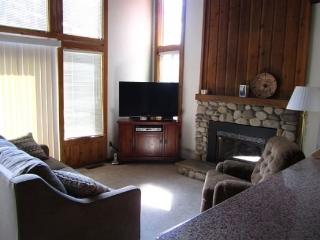 V57-Walk to Heavenly - easy lift access! Great access to hiking and biking in the summer! - South Lake Tahoe vacation rentals