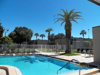 55 + Fully Furnish Condo by Tampa Florida Seminole - Florida North Central Gulf Coast vacation rentals