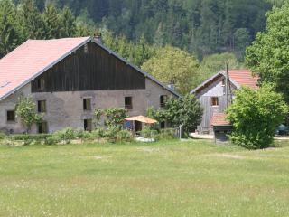 """Ferme """"Aux Moineaux"""" - Dommartin-les-Remiremont vacation rentals"""