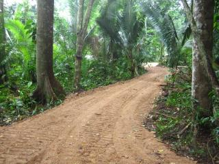 Jungle Adventure in Belize Eco Village - Benque Viejo del Carmen vacation rentals