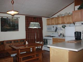 Cozy 2 bedroom Speculator Cottage with Deck - Speculator vacation rentals