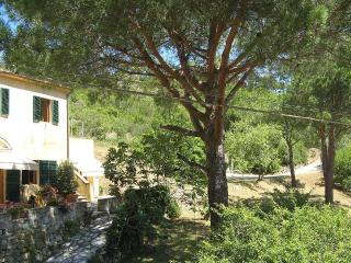 A charming country house near the sea - Portoferraio vacation rentals