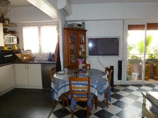 COSY FLAT NEXT TO  SEA SIDE - Antibes vacation rentals