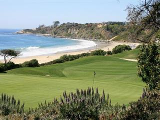 Find Serenity - Lux 1 Bed Dana Point - Fr $105/Ngt - Dana Point vacation rentals