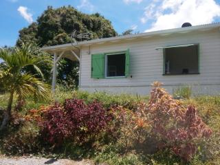 Nice House with Internet Access and Balcony - Gros-Morne vacation rentals