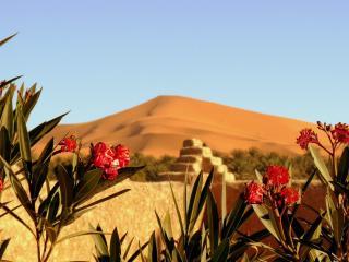 La Vallée des Dunes - Chambre double ou twin - Merzouga vacation rentals