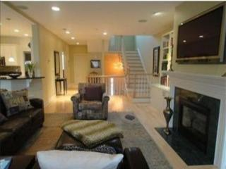 Test, do not rent - Beautiful, luxury 3 BR townhou - Newton vacation rentals