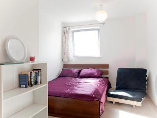 Bright Apartment in London Zone 2 - London vacation rentals