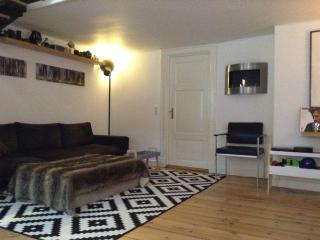 Cozy 2-storey Copenhagen apartment in the city center - Copenhagen vacation rentals