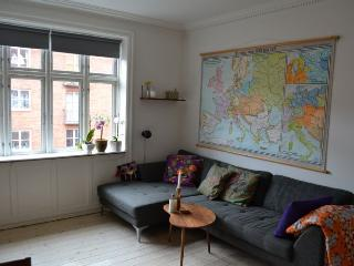 Bright Copenhagen apartment near Amagerbro metro - Copenhagen vacation rentals