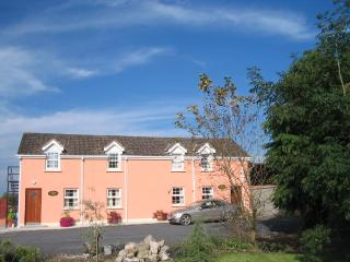 Charming 3 bedroom Apartment in Kiltale with Internet Access - Kiltale vacation rentals