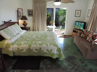 Seaside Studio with A/C & Oceanview - Poipu vacation rentals