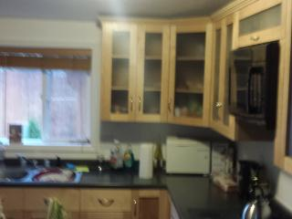 Tastefully Decorated House Rental - Shelton vacation rentals