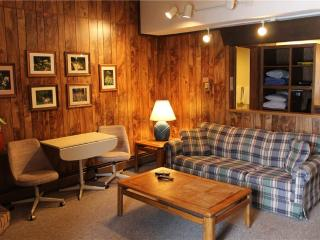 Located at Base of Powderhorn Mtn in the Western Upper Peninsula, A Cozy Trailside Condo with a Shared Hot Tub & Allows Dogs - Bessemer vacation rentals