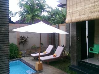 3 bed pvte pool villa walk to beach & restaurants - Sanur vacation rentals