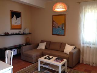 Nice Condo with Internet Access and A/C - San Marco D'Alunzio vacation rentals