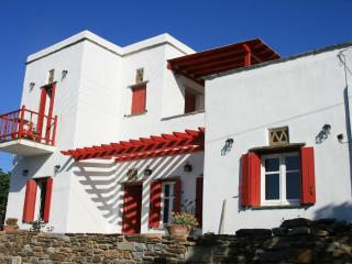 Beautiful Villa with Internet Access and Housekeeping Included - Panormos vacation rentals