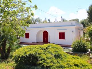 Villa Dei Pini - Selva di Fasano vacation rentals