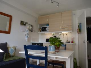 Charming Cottage with Internet Access and Garden - Millport vacation rentals