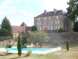 Bright 8 bedroom Castle in Belves - Belves vacation rentals