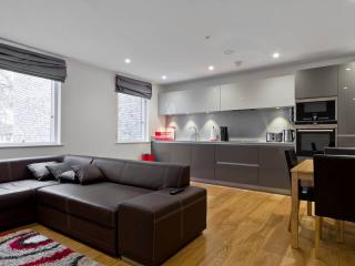 ★HUGE MODERN FLAT CENTRAL LONDON★ - London vacation rentals