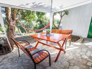 Apartment Emili 1 - Rogac vacation rentals